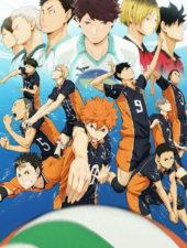 Первый сезон Волейбол